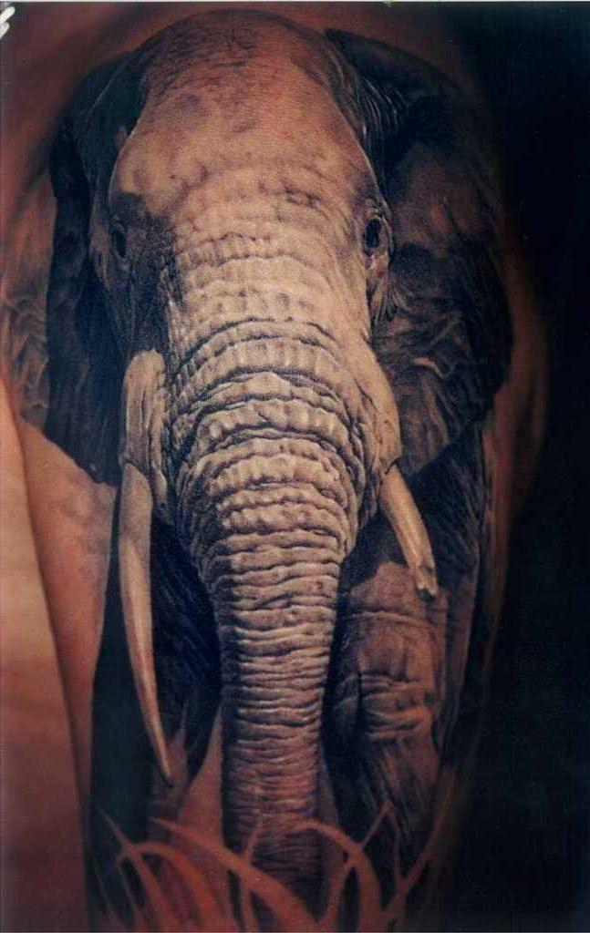Africal Elephant realistic tattoo