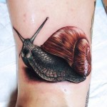 Almost Silver Snail realistic tattoo