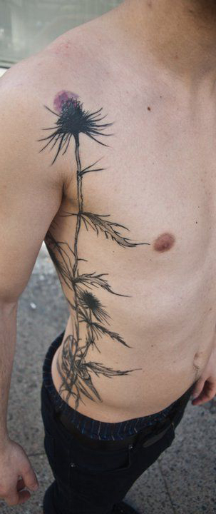 Dark Scottish Thistle tattoo on Torso side