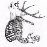 Deer Ribs Skeleton dotwork