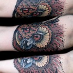 Enlightened Owl traditional tattoo