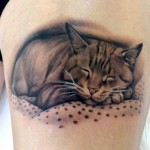 Graphic Sleeping Cat realistic tattoo