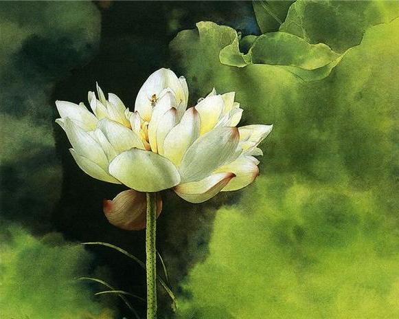 Lonly lotus flower tattoo