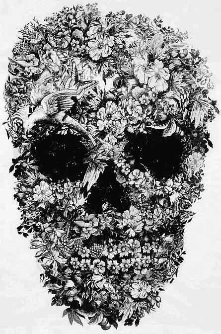 Nature Kills Skull