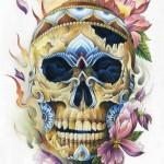 Royal Flora Skull