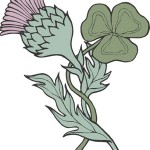 Scotish Thistle and Irish Trefoil