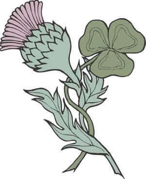 Scotish Thistle and Irish Trefoil