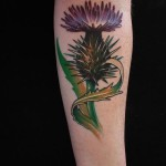 Scottish Thistle Tattoo on Arm