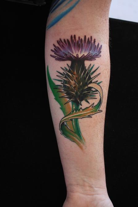Scottish Thistle Illustration tattoo on hand