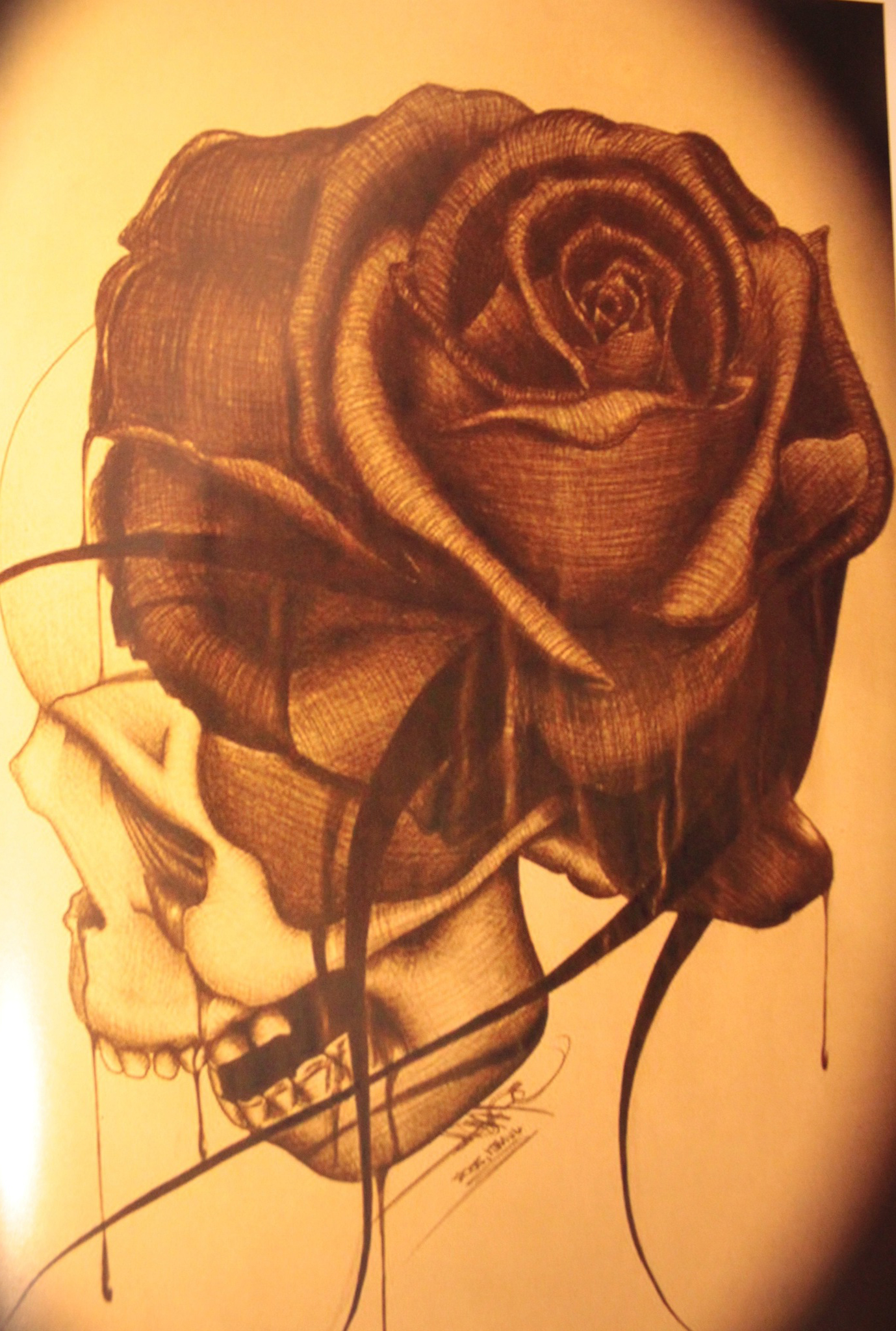 Skull illustration rose drawing tattoo