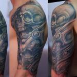 Shoulder Skull Organic