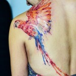 Shoulder colorful Parrot tattoo