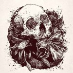 Soil Not Deep Skull