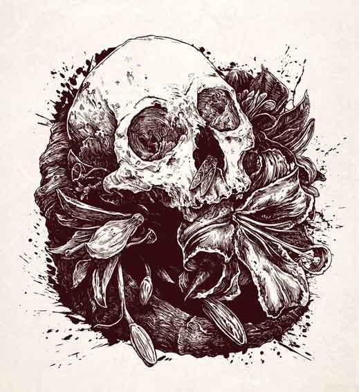 Soil Not Deep Skull