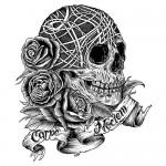 Skull carpe noctem
