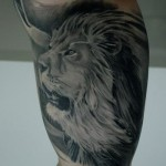 Belly Side Lion Realistic tattoo by Black Ink Studio
