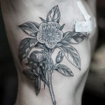 Bookish Flower Graphic tattoo idea on Torso Side
