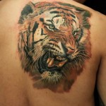 Chinese Tiger Realistic tattoo by Led Coult