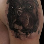 Realistic Dog tattoo by Piranha Tattoo Studio