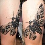 Skull Wings Moth Graphic tattoo idea