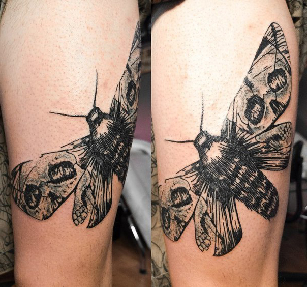 Scull Wings Moth Graphic tattoo idea
