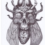 Spider Bee Skull tattoo sketch
