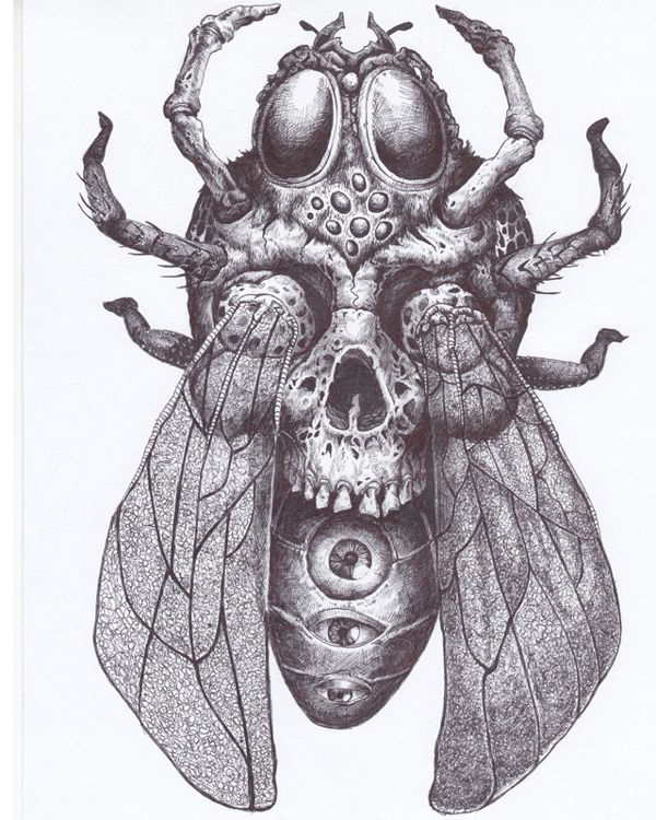Spider Bee Scull tattoo sketch