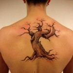 Back Old Tree tattoo by Resul Odabaş