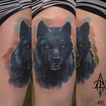 Black Wolf Realistic tattoo by Agat Artemji