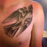 Eye Dove Graphic tattoo by Sarah B Bolen