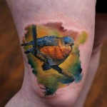 Realistic Aquarelle Bird tattoo by Bloodlines Gallery