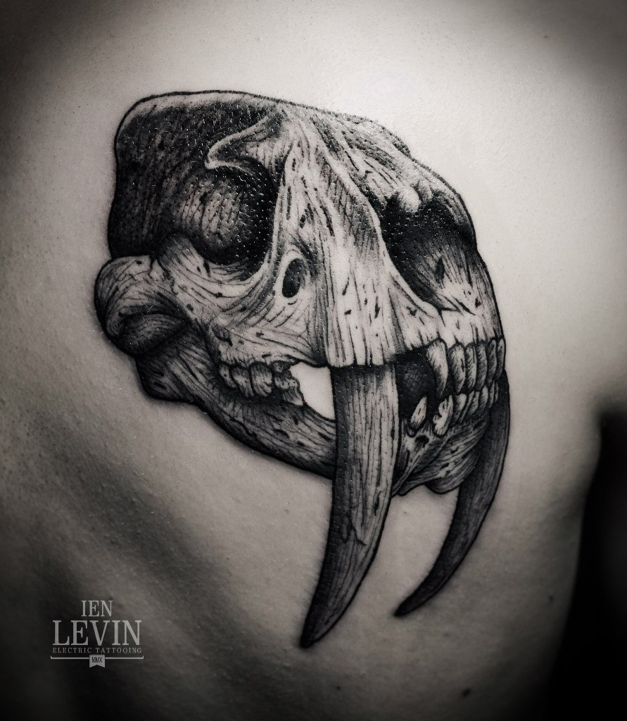 Saber Teeth Scull tattoo by Ien Levin