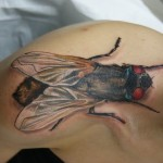 Shoulder Giant Fly 3D tattoo by Tantrix Body Art