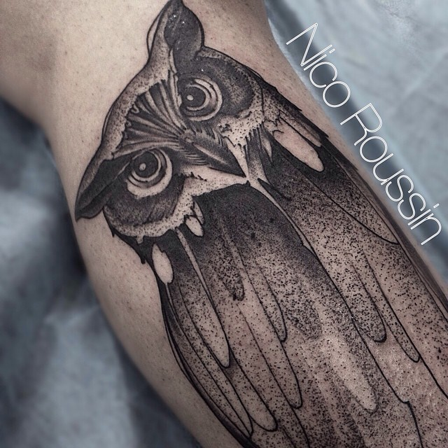 Curious Owl on Leg