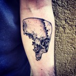 Not Full Dotwork Skull Arm tattoo