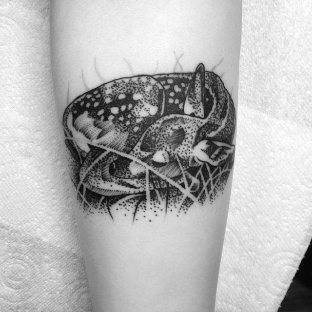 Sleeping Deer Dotwork tattoo
