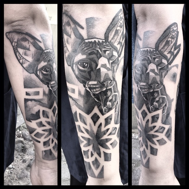Sphynx Cat Arm tattoo