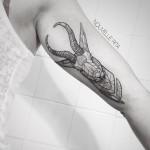 Antelope Arm tattoo