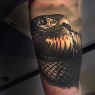 Arm Snake Realistic tattoo