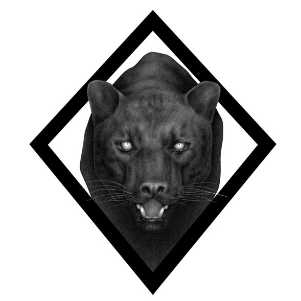 Panther tattoo idea