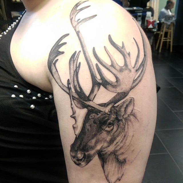 Shoulder Graphic Moose Tattoo
