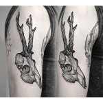 Skull with Antlers Dotwork tattoo