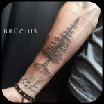 Arm Spruce Tattoo