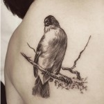 Realistic Graphic Bird Tattoo
