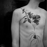 Rose and Spider Tattoo on Chest