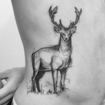 Sketchy Stag Body Tattoo