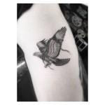 Unleashed Falcon Tattoo