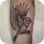 Arm Graphic Sparrow Tattoo