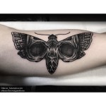 Wonderful Black Moth on Arm