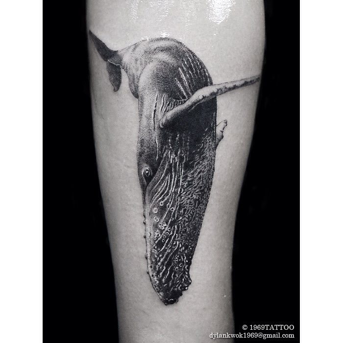 Blue Whale Tattoo on Arm